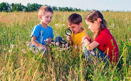 Educación medioambiental para niños